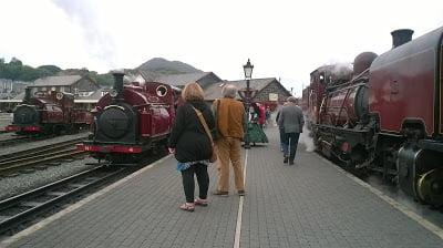 Prince, Palmerston & Garratt 138 at Harbour Station