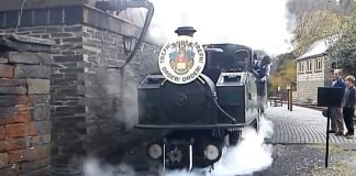 Earl of Merioneth at Tanybwlch in 2013