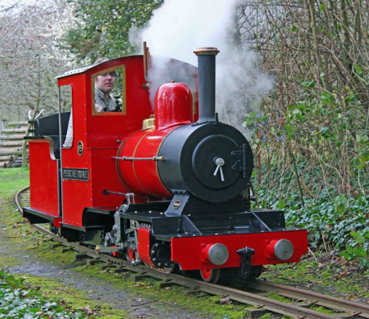 No. 4 Peter the Private on the Royal Victoria Railway
