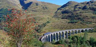 ScotRail 156 crosses the glenfinnan viaduct (used in the Harry Potter films)