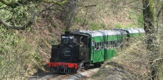 85 on the Welshpool and Llanfair Light Railway