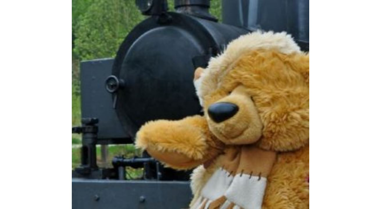 Teddy bears and steam trains this weekend at the Apedale Valley Railway