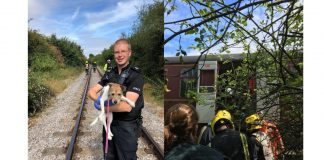 Steam train helps police