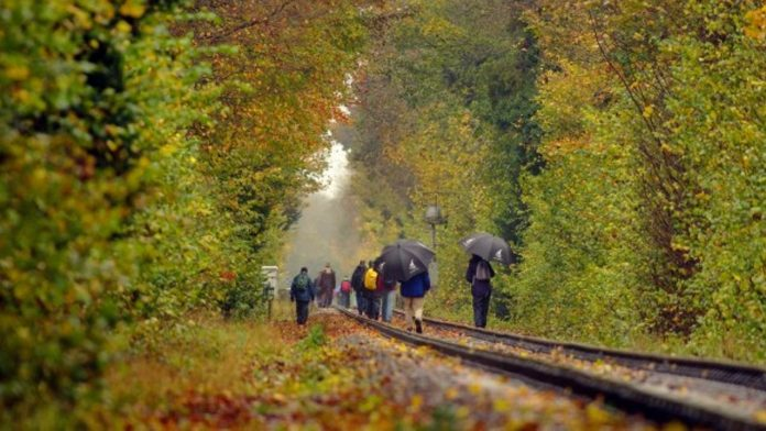 Walk the line at the Mid Hants Railway