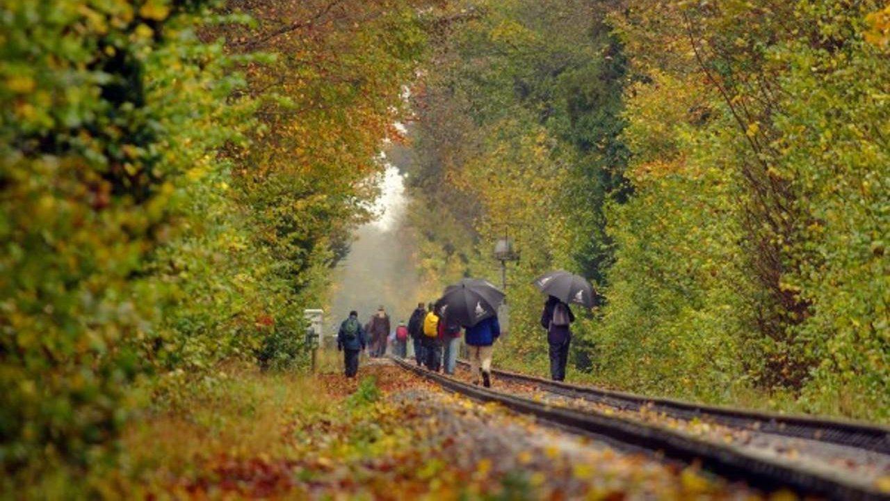 Walk the line at the Mid Hants Railway