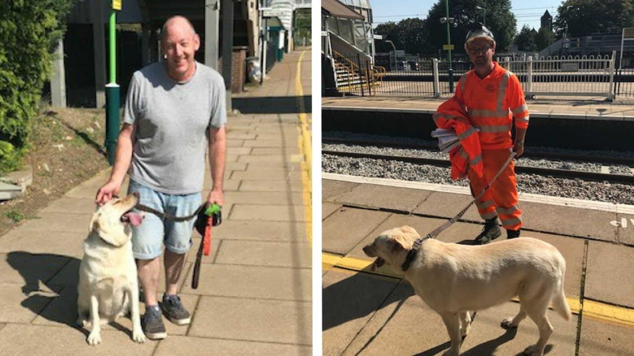 Leighton Buzzard dog rescue