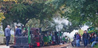 Steam loco cavalcade at Page's Park, Chaloner leading. 30/09/17.