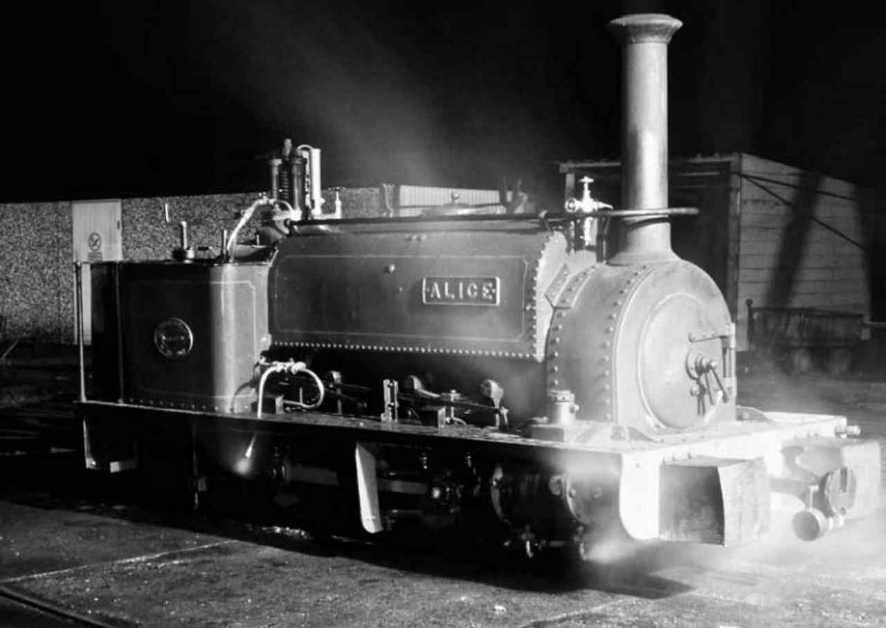 Alice at the Bala Lake Railway