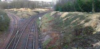 East kilbride line tree cutting