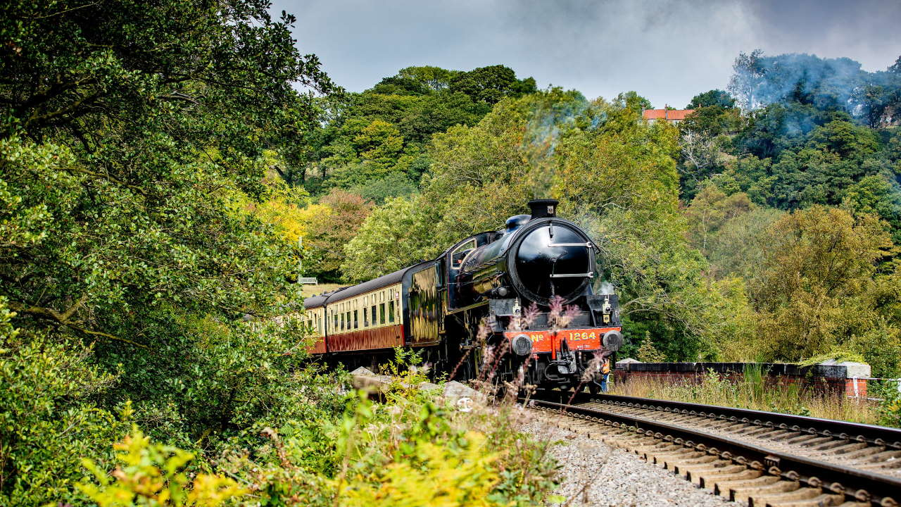 B1 61264 near Goathland on the North Yorkshire Moors Railway