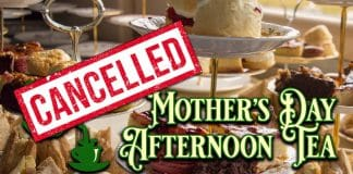 Downpatrick and County Down Railway cancels Mothers Day Afternoon Tea train