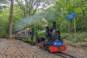 Mad Bess at Eleanor's Loop on the Ruislip Lido Railway
