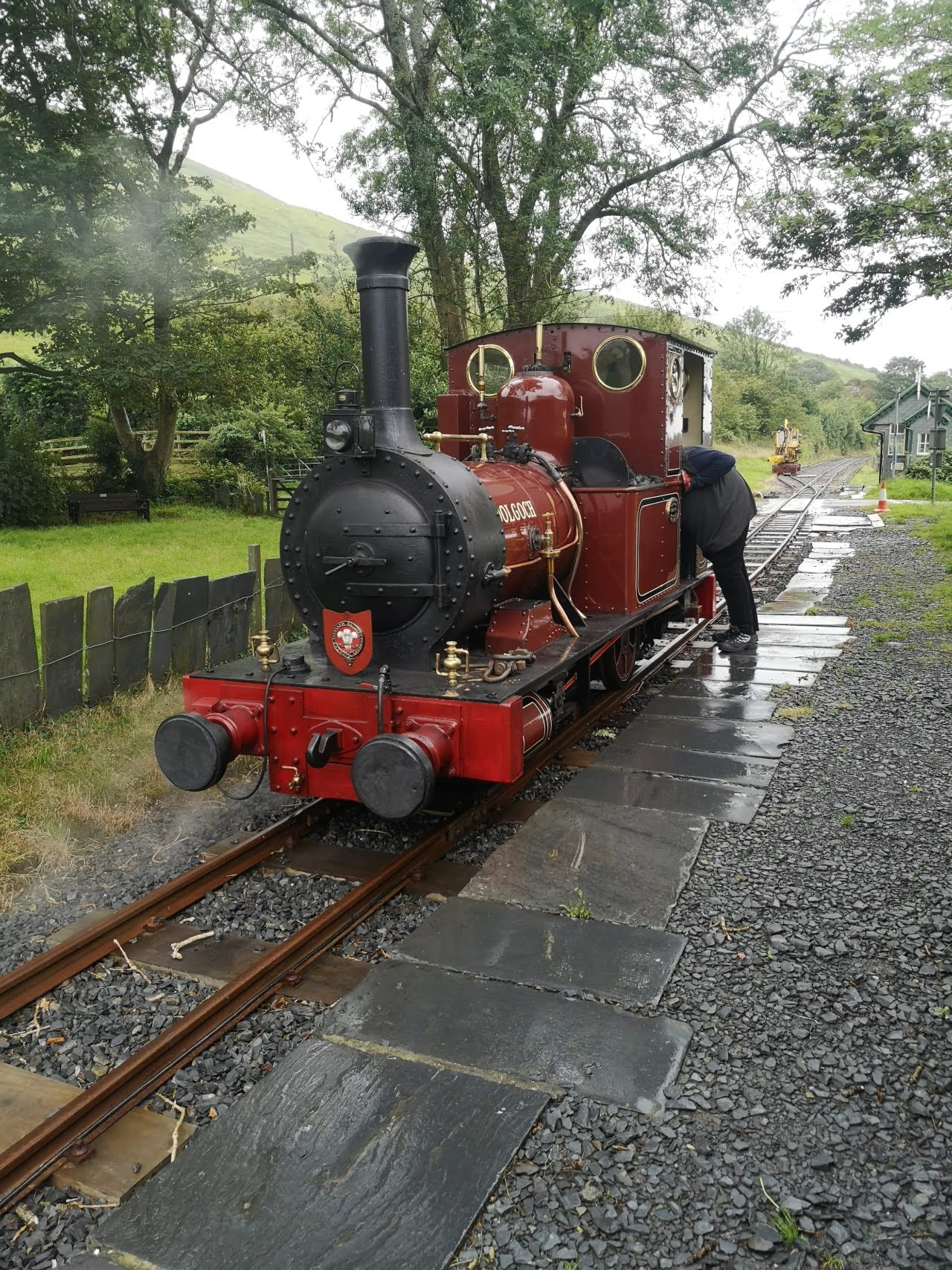 No 2 Dolgoch on test at Rhydyronen