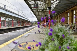 Penrith Station Flowers