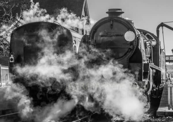 847 in sun at Sheffield Park on the Bluebell Railway