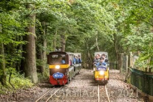 John Rennie and Robert on the Ruislip Lido Railway