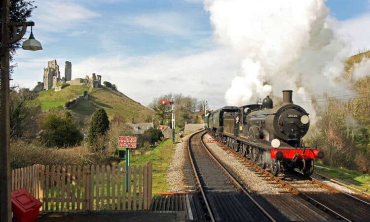 LSWR T9 on the Swanage Railway