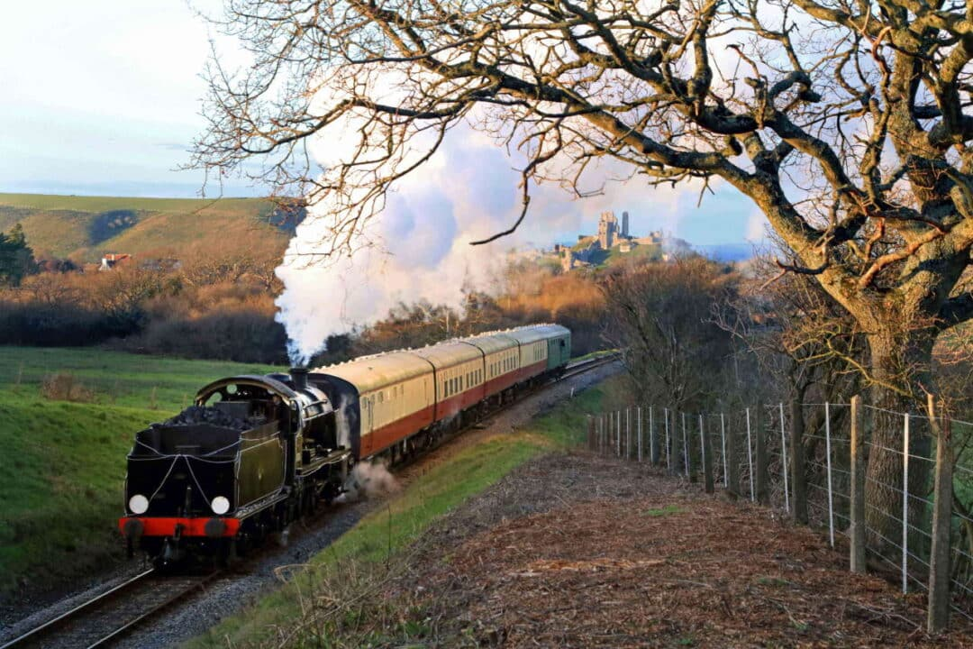 31806 near Corfe Castle