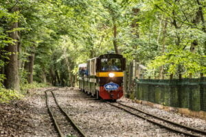 John Rennie on the Ruislip Lido Railway