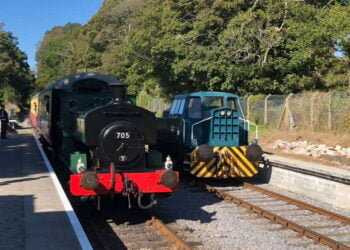 Steam train at the Plym Valley Railway