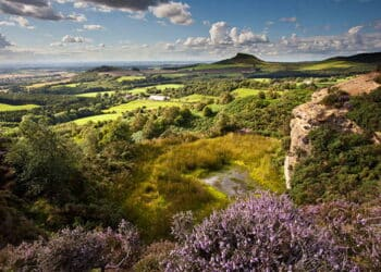 Roseberry Topping from Gribdale, North York Moors National Park