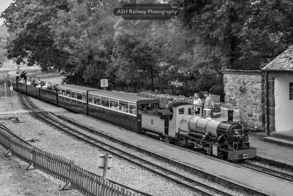 Northern Rock on the Ravenglass and Eskdale Railway