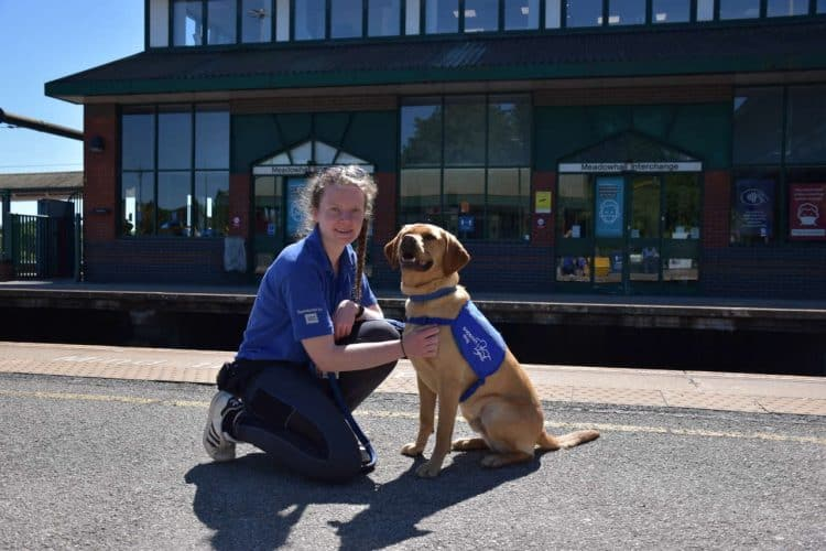 Sheffield Support Dogs on Northern services