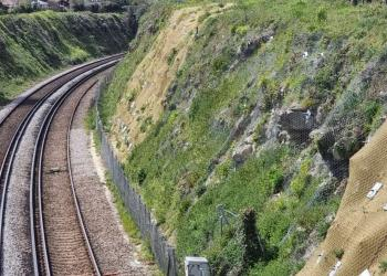 Bearsted cutting