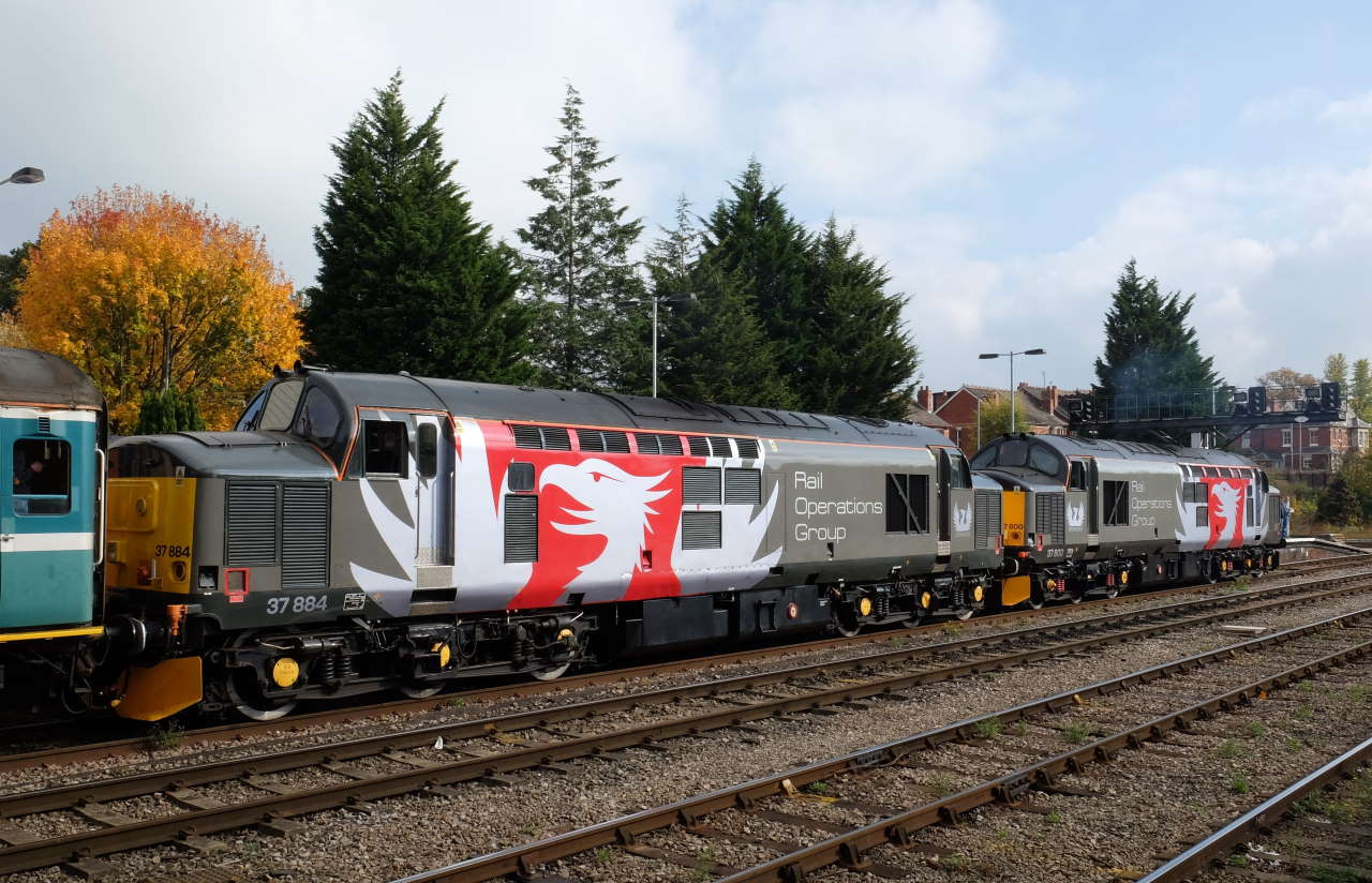 Rail Operations Group class 37's