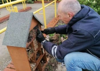 The bug hotel at Diss Railway station