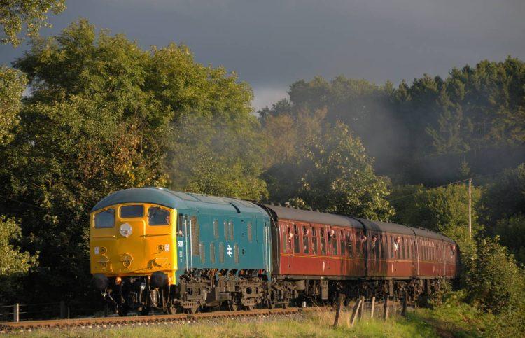 Class 24 24081 (D5081)