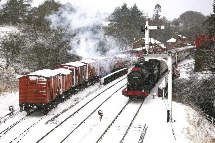 Moorlander in Snow
